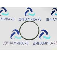 Кольцо уплотнительное корпуса ТНВД АВТОДИЗЕЛЬ
